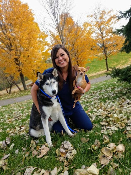 Shamrock Animal Hospital Veterinarian In Rosemount Mn Us Meet